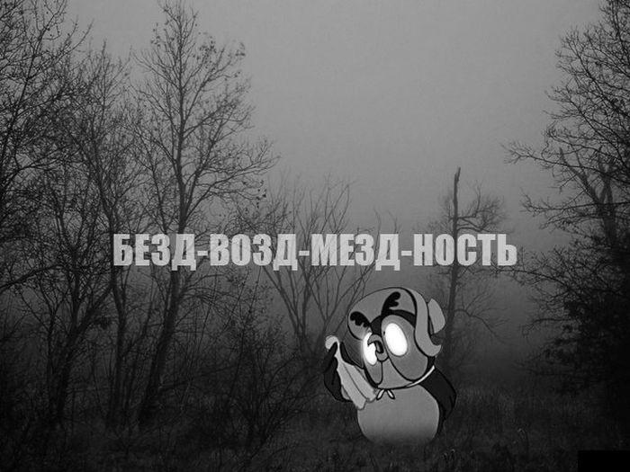 Прикольные картинки (137 фото)