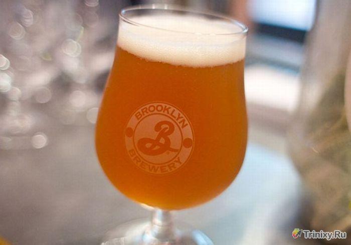 Самые необычные сорта пива (9 фото)