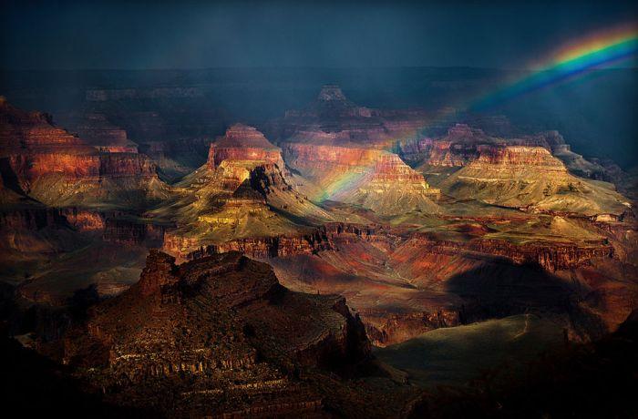 Удивительные фотографии от National Geographic (46 фото)