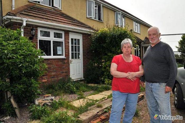 Сдал дом в аренду пожилой семейной паре (19 фото)