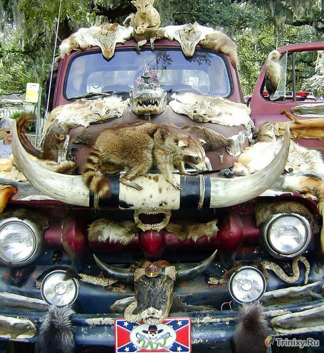 Грузовик сумасшедшего таксидермиста (10 фото)