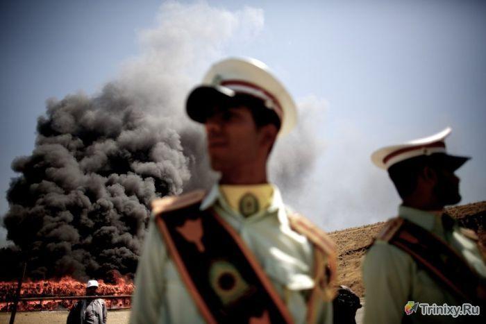Уничтожение 100 тонн наркотиков в Иране (12 фото)