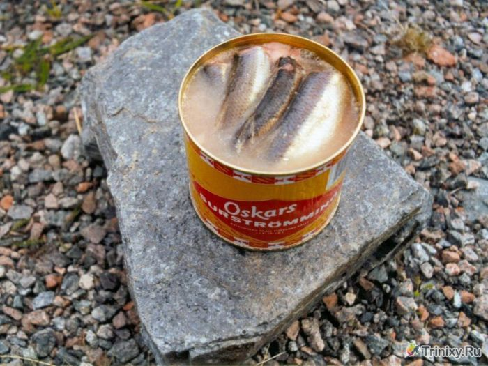 ТОП-10 самых отвратительных деликатесов (10 фото)