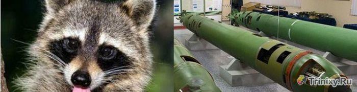 Добрые названия российского боевого оружия (12 фото)