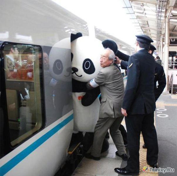 Только в Японии (50 фото)