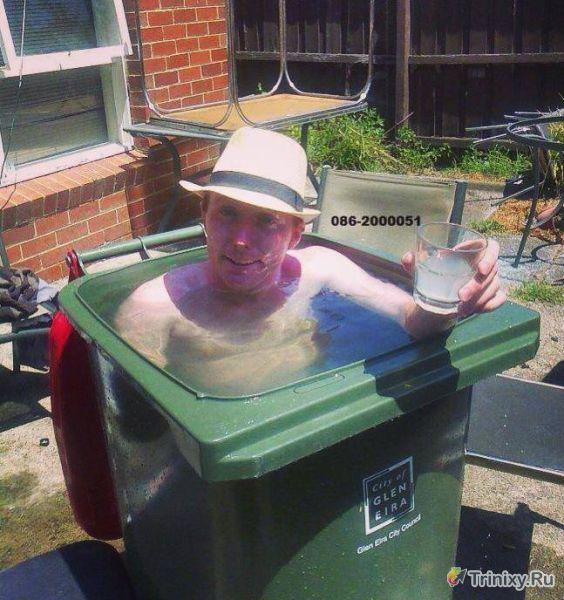 Летняя жара (42 фото)