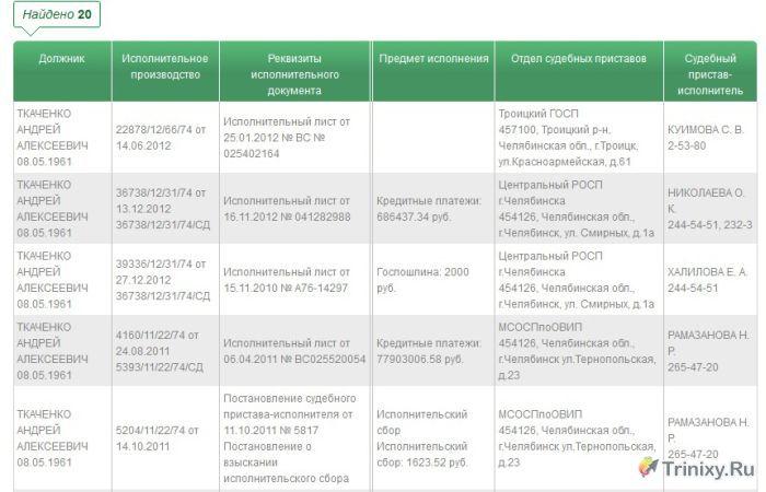 Депутат задолжал государству 400 миллионов рублей (7 фото)