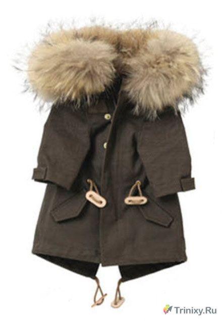 Загадка дня. Модная куртка (2 фото)