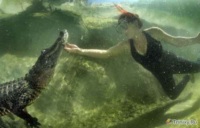 Девушка, которая спасает жизни хищных рептилий (10 фото)