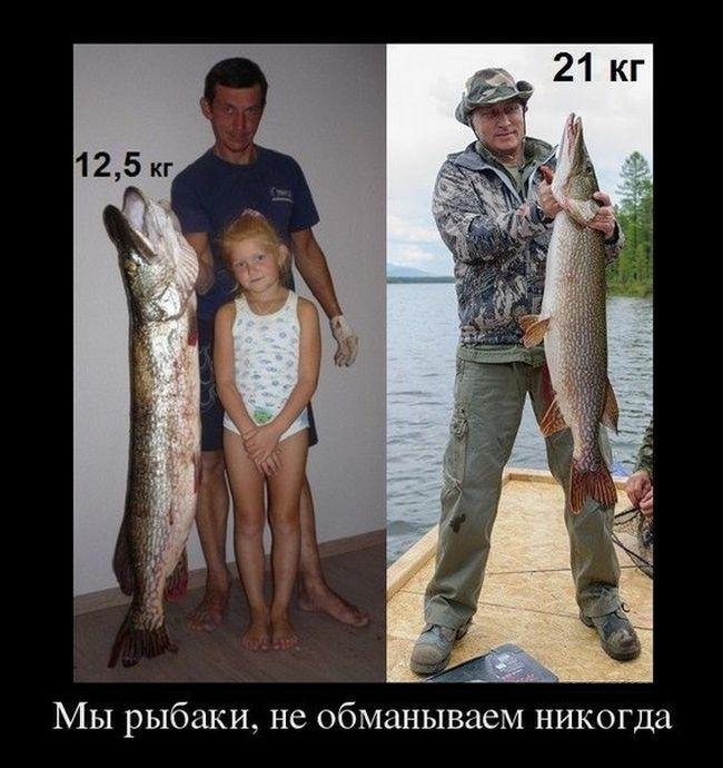 http://trinixy.ru/pics5/20130801/putin_10.jpg