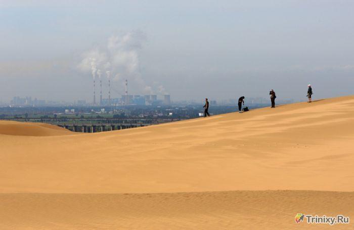 Удивительный отель-оазис посреди пустыни (28 фото)