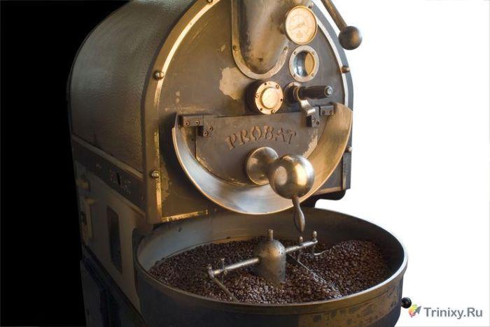 Что нужно знать о натуральном кофе (10 фото)
