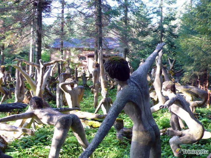 """Жуткое местечко - """"Мистический лес"""" (56 фото)"""