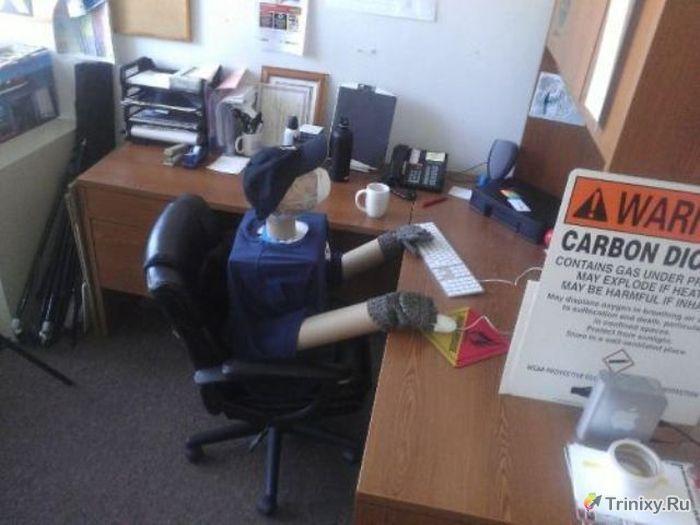 Приколы на рабочем месте. Часть 4 (24 фото)