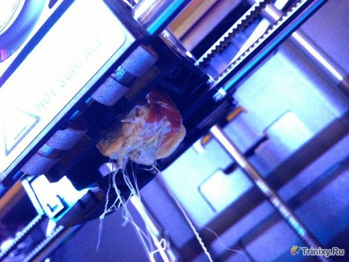 3D-принтеры тоже ломаются (25 фото)