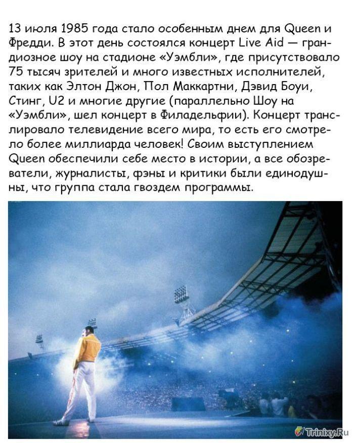 Факты о жизни и творчестве Фредди Меркьюри (21 фото)