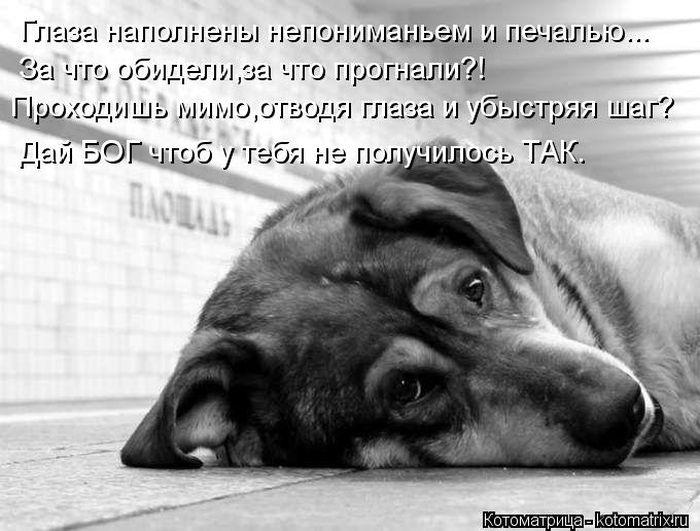 очень грустно картинки где тебя бросили россии все более