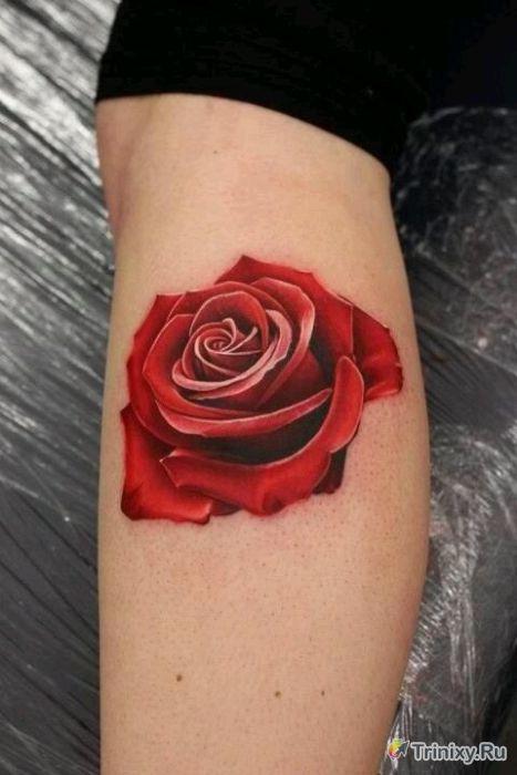 Невероятно реалистичные татуировки (31 фото)