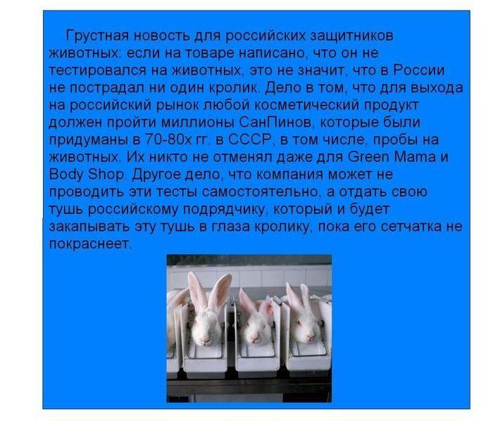 Факты о бытовой химии, которые должен знать каждый (8 картинок)