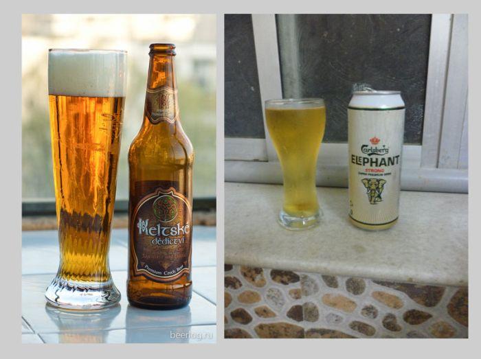 руководство по типам пива - фото 7