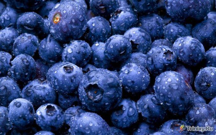10 продуктов, которые необходимы организму осенью (10 фото)