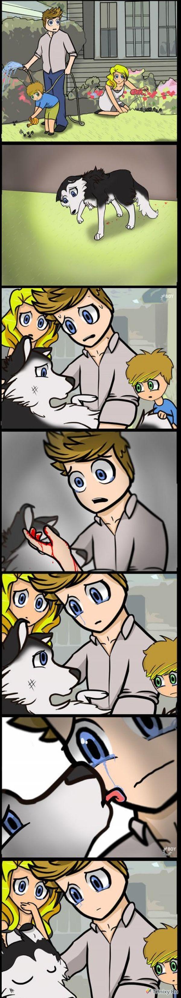 Вся жизнь в одном комиксе (6 картинок)