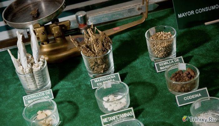 Музей борьбы с наркомафией (27 фото + видео)