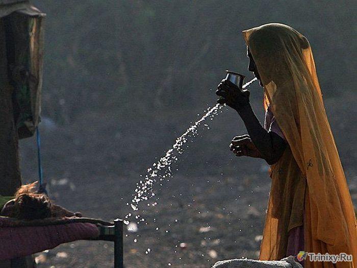 Познавательные факты об Индии (22 фото)