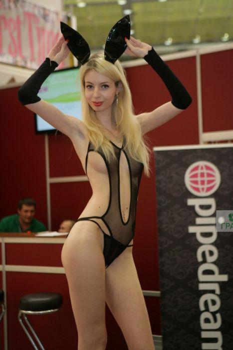 Фото с выставки X'show 2013