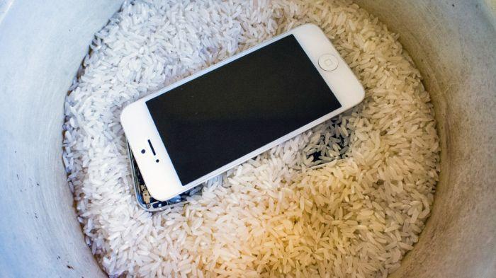 """Как спасти """"утопленный"""" или залитый iPhone 5 (11 фото)"""