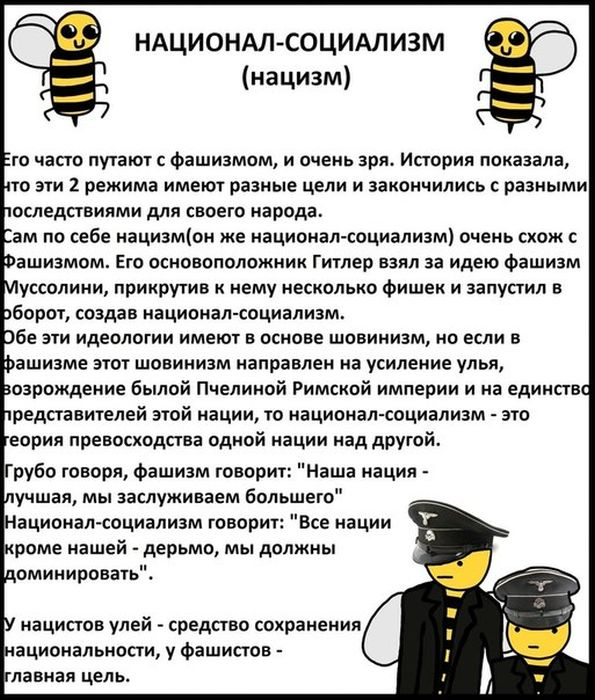 Пчелы знают все о политике (19 фото)