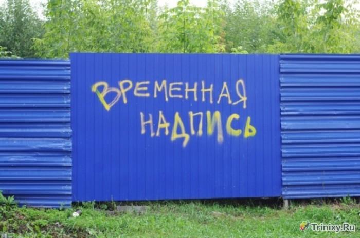 Смешные надписи (52 фото)
