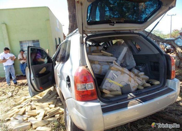 Контрабандист погиб из-за 500 килограммов марихуаны (4 фото)