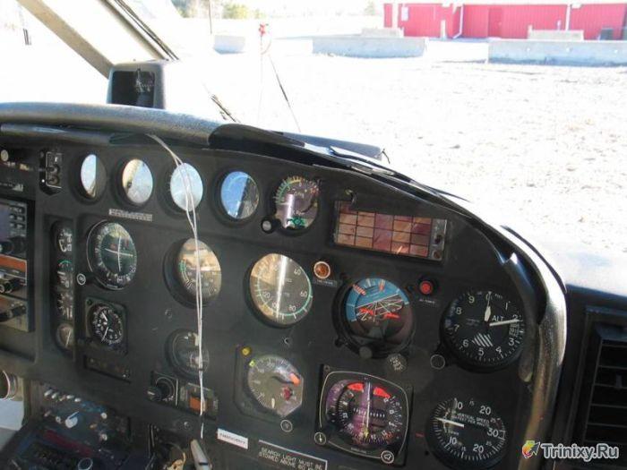 Вертолет против стаи птиц (23 фото)
