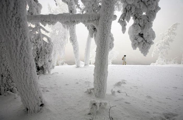 Год на Енисее - красивый фотопроект (38 фото)