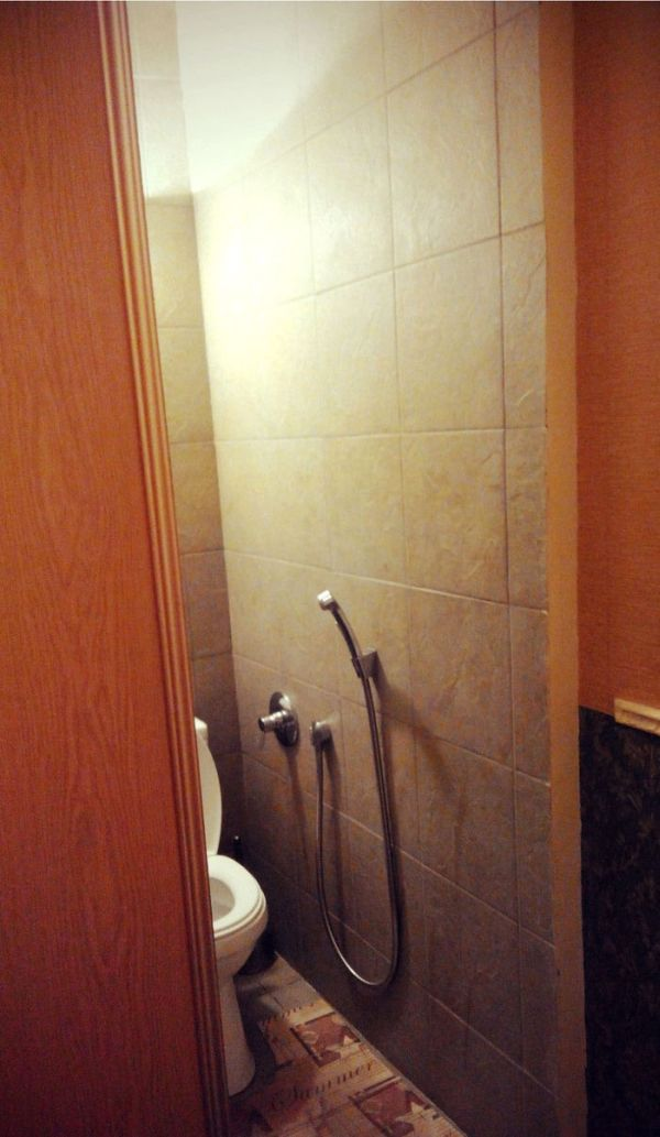 """Квартира с """"потайным"""" туалетом (3 фото)"""