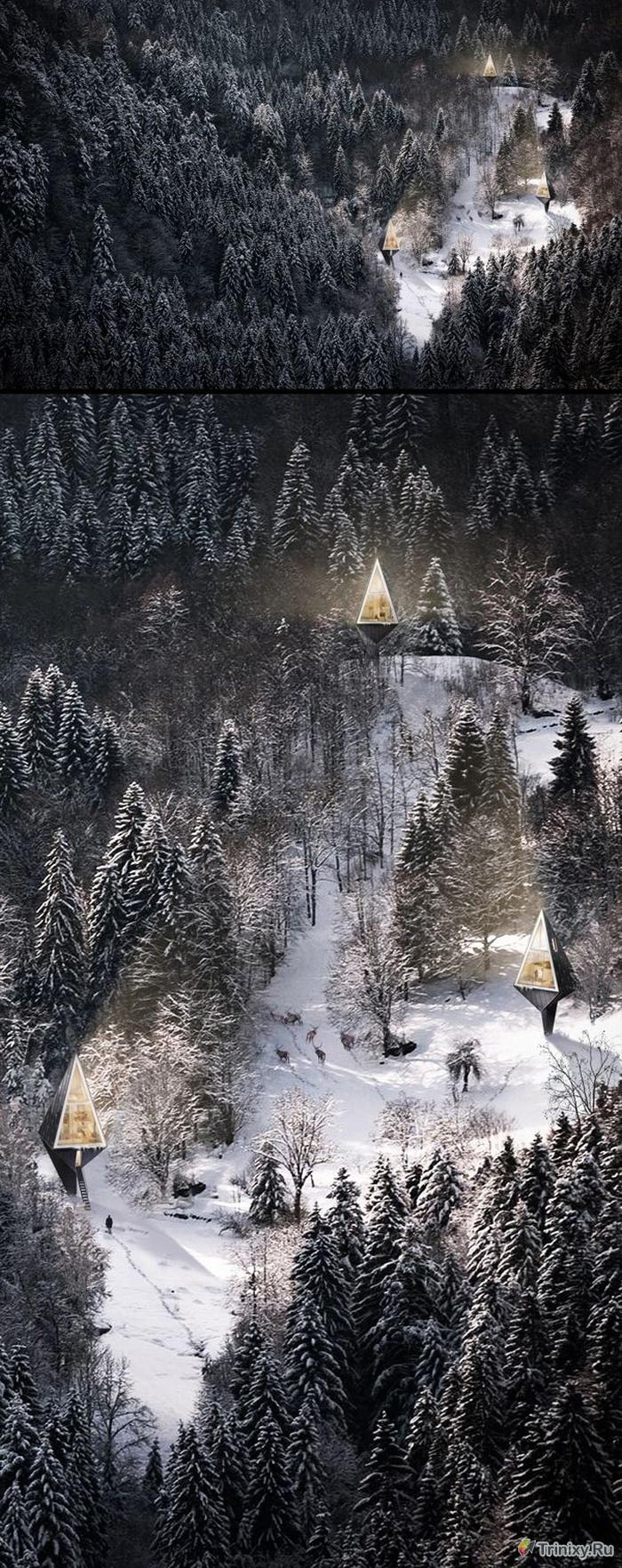 """""""Первобытное жилище"""" - экологичные дома в лесу (6 фото)"""