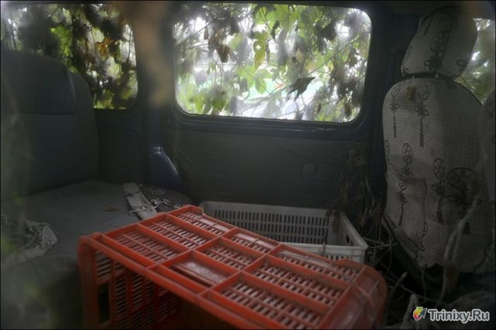 Брошенный зомби-автомобиль в Китае (4 фото)