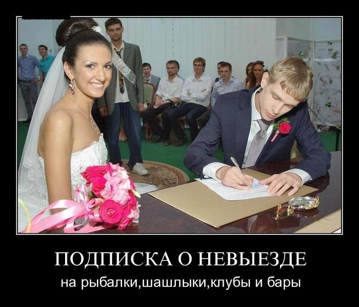 http://cdn.trinixy.ru/pics5/20131024/demotivatory_28.jpg