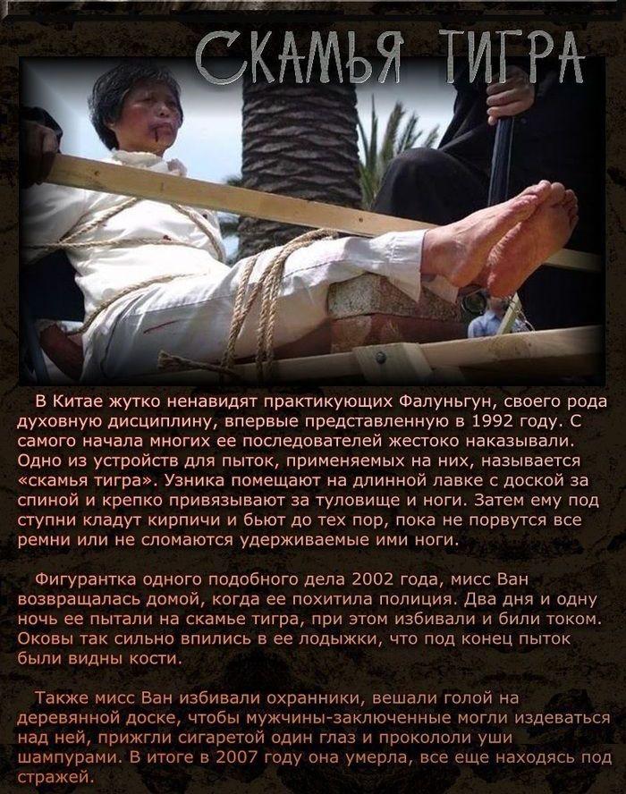 Современные орудия и виды пыток (11 фото)