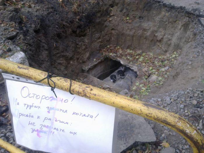 Заботливые жители дома предупредили коммунальщиков (3 фото)