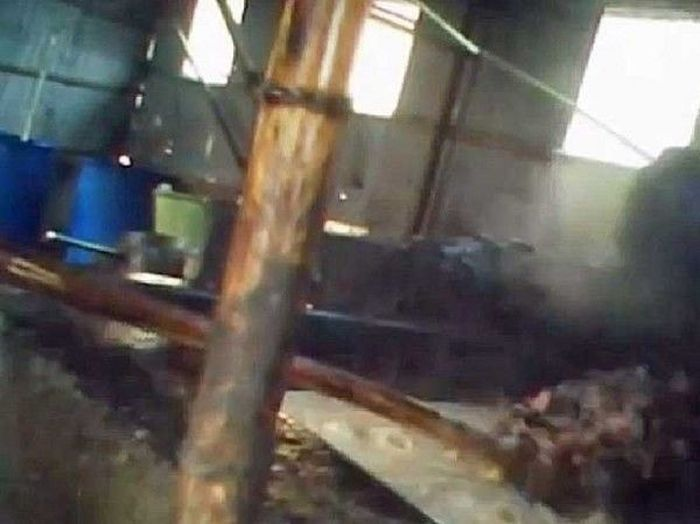 Шокирующий секрет китайского фастфуда (3 фото + видео)