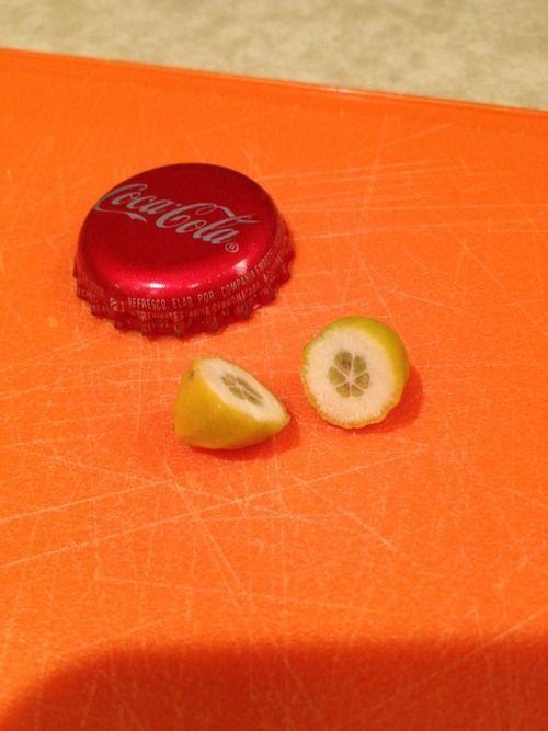 Сделал закуску из декоративного лимона (3 фото)