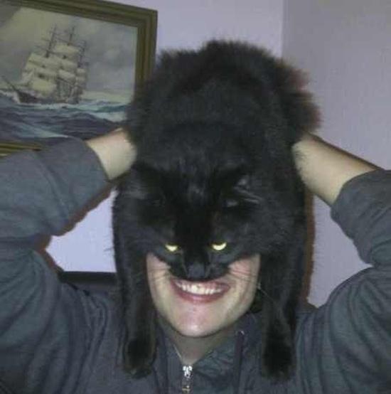 Новый интернет-мем: Кэтмен (20 фото)