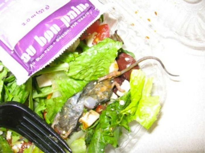 Неприятные вещи, которые были найдены в еде (20 фото)