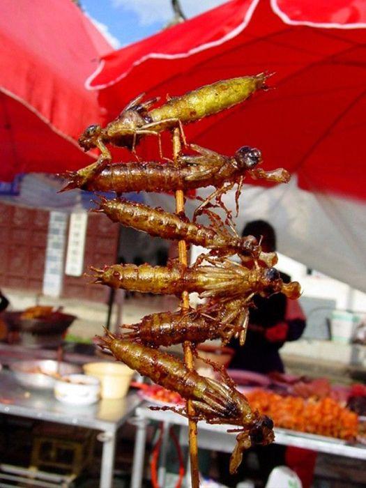 Насекомые, которые считаются деликатесами в разных странах мира (15 фото)