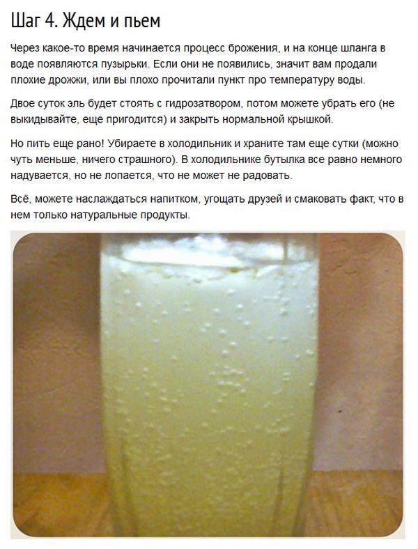 Готовим вкусный имбирный эль (8 фото)