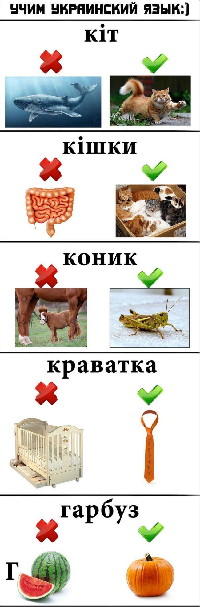 Забавные ассоциации при изучении иностранных языков (4 картинки)