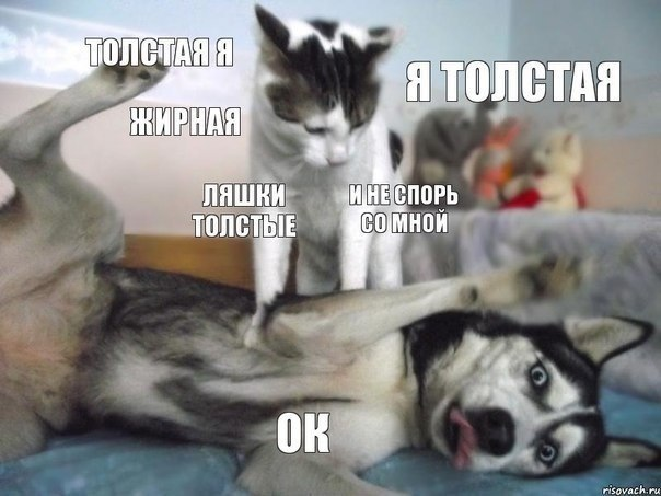 http://cdn.trinixy.ru/pics5/20131125/podborka_137.jpg
