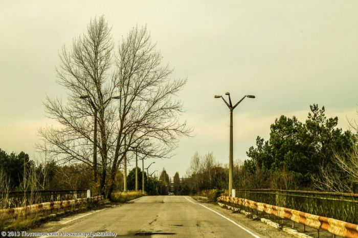 Времена года в зоне отчуждения Чернобыльской АЭС (56 фото)
